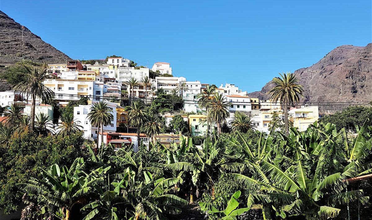 Institut Sommer: Coaching Reise nach La Palma