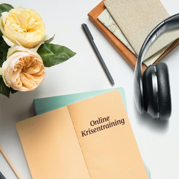 Anke Sommer Online Krisentraining